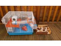 Hamster cage, woodland maze and exercise ball