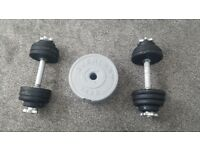 Two barbells and cast iron weights