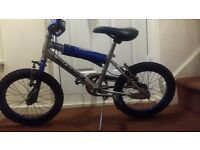 Raleigh Bikes Children BMX bike
