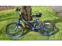 "Boys blue 12"" bicycle"