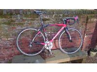 Pinarello FP Uno mens road bike- new lower price!