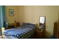Double Room Available in Lovely Bruntsfield Flat