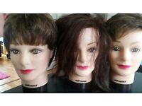 Hairdressing practice heads