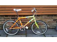 "(2757) 20"" EMMELLE LEOPARD BOYS GIRLS CITY TOWN HYBRID BIKE BICYCLE; Age: 7-9; Height: 123-138 cm"