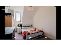 Self Contained Studio Flat (Large Double En-Suite Room + Separate Living Room)