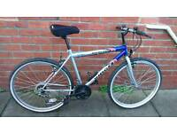 Adults mountain ridge bike Good condition and ready to ride