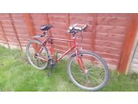 Men's Hybrid Raleigh Cyclone and Ladies Hybrid bicycle together for £60