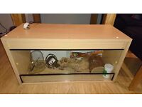 3ft vivarium and supplies, collection only