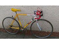 Falcon Banana Road Bike