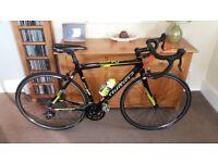 Brand New £1000 Carbon Road Bike (M)