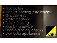 Plumbing, heating (gas safe) services - Swansea area