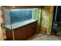5 FT FISHTANK WITH DARKWOOD CABINET