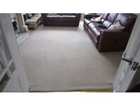 BEIGE CARPET - BARGAIN
