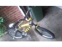 BMX Rhino bicycle