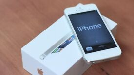 Apple iPhone 5, White 16GB -02/GiffGaff - Buy In Confidence From An Apple Retailer!