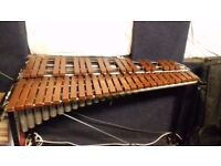 3.5 Octave Xylophone for Sale (Premier)