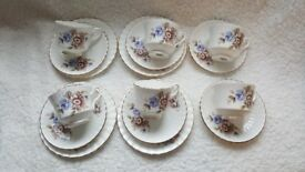 Bone China Tea set Salisbury Pretty Flower Design