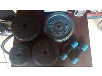 Free Weights Wieder, York, Golds Gym
