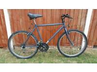 Adult Gents Mountain Bike in Good Condition
