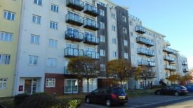 QUALITY TWO BED FLAT TO LET £800 PCM