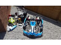 MS Pro Kart Race Package and IFor Williams Trailer