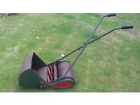 Webb Witch small lawn mower