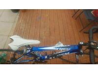 Trek Madone Road Carbon Bike
