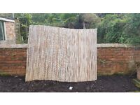 """Bamboo Garden Screen 210cm (7 feet) wide by 160cm (5' 3"""") high"""