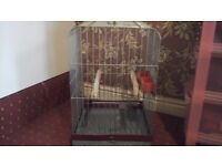MEDIUM SIZED BIRD CAGE /DELIVERY AVAILABLE