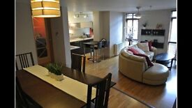 SHORT TERM LET: large luxurious fully furnished flat all bills included