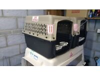 Medium Airline Approved Kennel for sale
