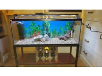 Fish tank 100 litres with stand