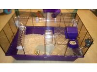 Hamster, cage and accessories