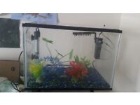 Two small glass fish tanks for sale