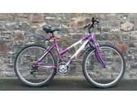 FULLY SERVICED FREE SPIRIT MIST BICYCLE