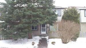 Renovated 3 Bedroom Townhome Available March 1 on Wilsonview Ave