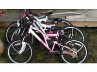 3 girls push bikes in need of a little tlc
