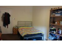 Lovely double bedroom available 01.08-01.09.