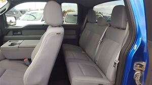 2013 Ford F-150 XLT 4X4 | One Owner | Tow Pkg Kitchener / Waterloo Kitchener Area image 9