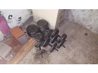 I have 2 weight benches 2 bar bells 1 belt an 4 dumbells plus more free weights