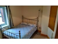 Lodger wanted for double bedroom in tidy terrace