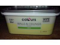 New 'colours' walls& ceilings buttercup paint