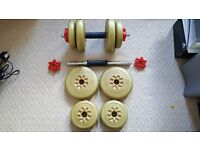 2 dumbbell weights -