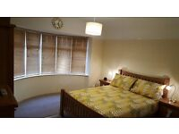 DOUBLE ROOM IN SWINDON SN31AB NOW AVAILABLE TO RENT..for prof person