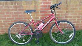 Girls Raleigh max mountain bike in good condition