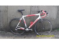 SPECIALIZED ALLEZ 18 SPEED RACING V/LIGHT 21.5in/55cm ALLOY FRAME/CARBON FORKS VERY CLEAN BIKE