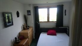 Double Ensuite Room to Rent From September
