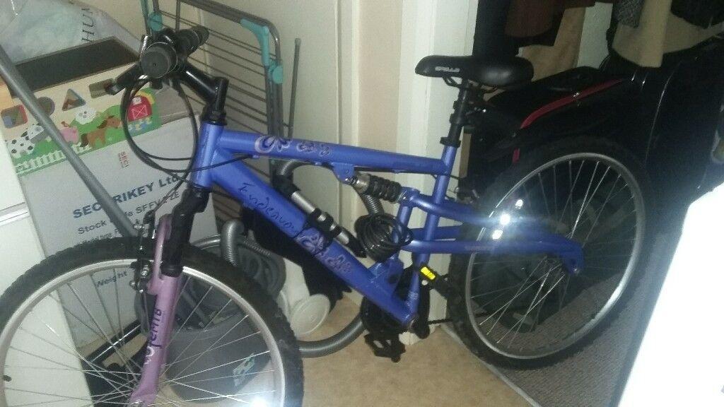 Women Endeavour FEMTB Bicycle