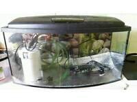 Sold......Fish tank and accessories