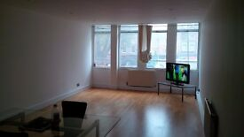 Spacious 1 Bedroom Flat in Whitechapel E1
